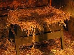 manger-cross
